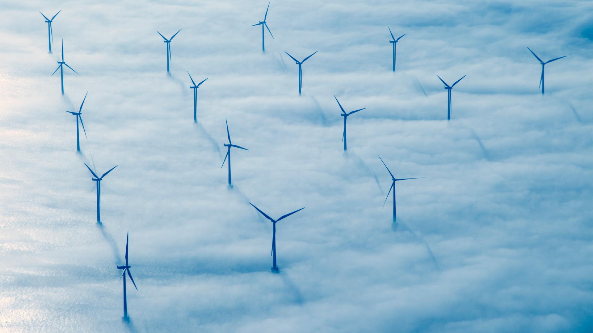 green transformation Denmark