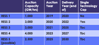 Auction Plan for Ireland